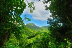 Cross-Island Track - Blick in die Berge