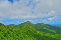 Cross-Island Track - The Needle - Blick nach Norden