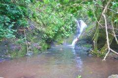 Cross-Island Track - Wasserfall