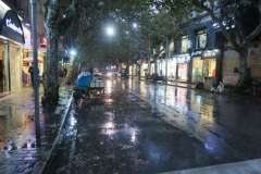 Franzoesische-Konzession-im-Regen