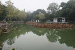 Fuxing Park-3