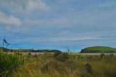 Haldane Curio Bay Road-2