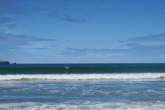 Porpoise Bay - Delfin springt aus Welle