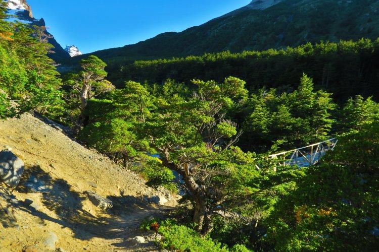 Weg von Domos Frances zum Paine Grande Shelter-2