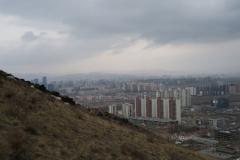 Berg mit Schafen am Rande der Stadt