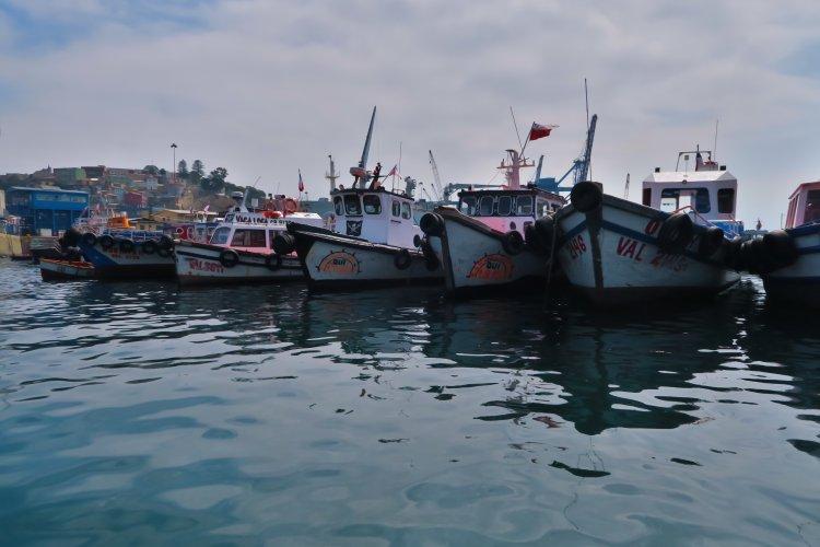 Hafen - Fischerboote
