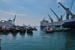 Hafenrundfahrt - Fischerboote