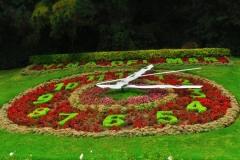 Blumenuhr-2