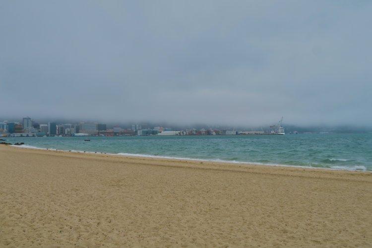 Oriental Bay - Blick zum Hafen