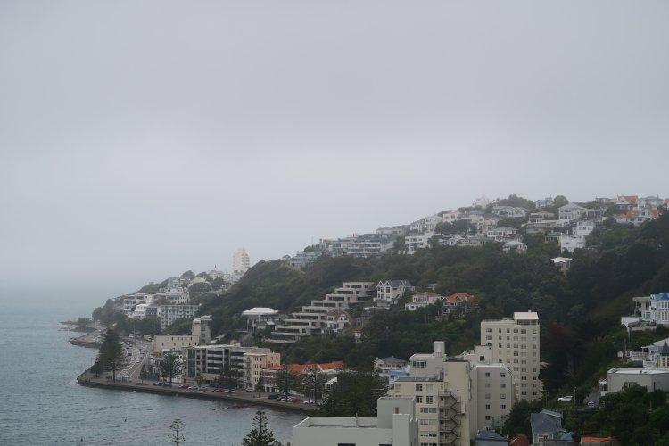 Oriental Bay von der Palliser Road