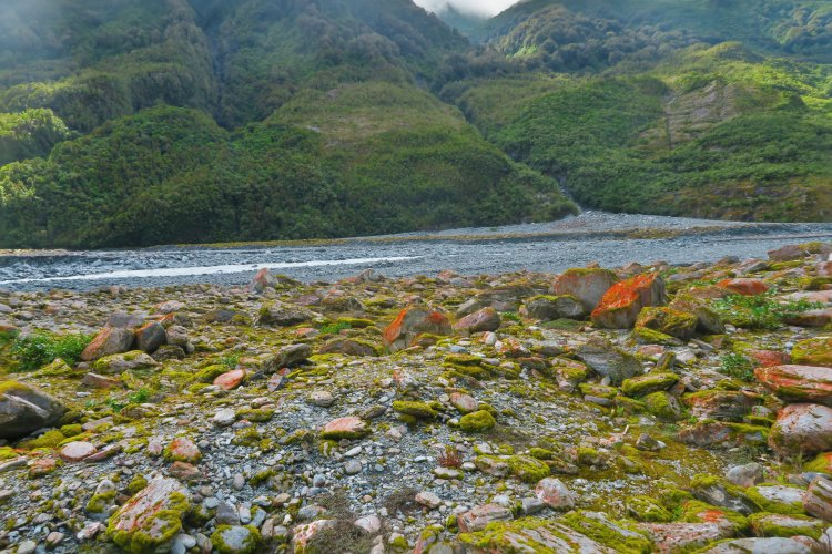 Franz Josef Gletscher - rote Steine