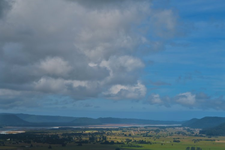 Waiho River - Blick Richtung Meer
