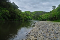 Whanganui River-2