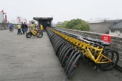 Fahrradverleih auf der Stadtmauer