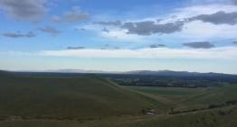 Auf einer Schaffarm in Neuseeland