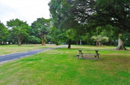 Campingplatz Greyton – Greytown Campground