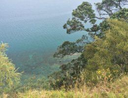 Sandrett Regional Park – Martins Bay
